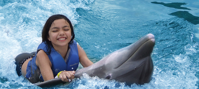 DOLPHIN COVE_slide